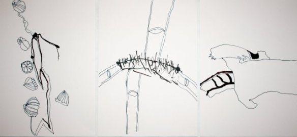 sammenzu (3teilig) – Version 3 (c) Zeichnung von J.Küster und S.Haun