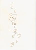 #31.2 Zerstörung (c) Zeichnung von Susanne Haun