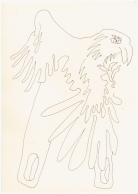 #64.3 Nullzange (c) Zeichnung von Susanne Haun(3)